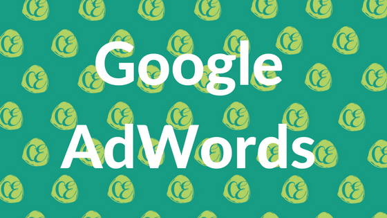 Google AdWords Management Perth